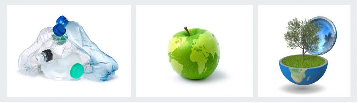 Foodimpct MVO advies in de food sector